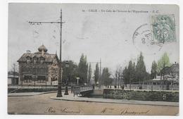 (RECTO / VERSO) LILLE EN 1906 - N° 29 - UN COIN DE L' AVENUE DE L' HIPPODROME - CPA VOYAGEE - Lille