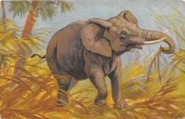 CPA - Illustration éléphant - Elefantes