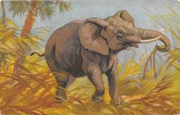 CPA - Illustration éléphant - Éléphants