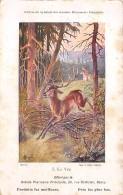 CPA Fantaisie - Cerf Deer - Nancy - Other