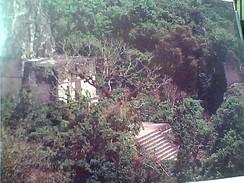 GUATEMALA - Templo II O De Las Mascaras TEMPIO N1990 GC13687 - Guatemala