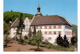 WT Tiengen - Schloss - Waldshut-Tiengen
