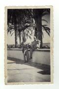 Photo Représentant Un Groupe De Zouaves - Guerre, Militaire