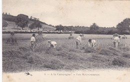 CPA A La Campagne, Les Moissonneurs (pk34275) - Campesinos