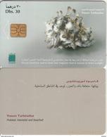 U.A.E.(chip) - Shellfish/Vasum Turbinellus, Chip Solaic, CN : 044A(letraset), Used