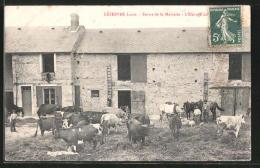 CPA Ruandin, Lefebvre Louis, Ferme De La Moinerie - France