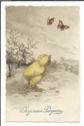 16604 - Joyeuses Pâques Poussin Admirant Deux Papillons HWB SER 2261 - Pâques