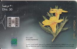 U.A.E.(chip) - Flower 6/Arnebia Hispidissima, CN : 004B, Used