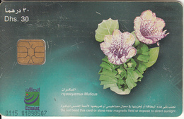 U.A.E.(chip) - Flower 11/Hyoscyamus Muticus, CN : 0115, Used