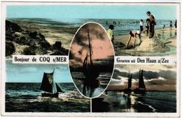 De Haan, Coq Sur Mer, Den Haan, Groeten Uit Den Haan Aan Zee (pk32913) - De Haan