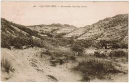 De Haan, Coq Sur Mer, Den Haan, Promenade Dans Les Dunes (pk32917) - De Haan