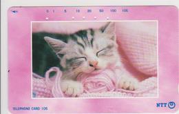 JAPAN - 231-290 - CAT - Japan
