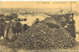 CP 35 CANCALE  Le Triage Des Huitres Reproduction Carte Ancienne - Cancale