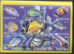 COMORES   874  MINT NEVER HINGED MINI SHEET OF FISH-MARINE LIFE - Fische