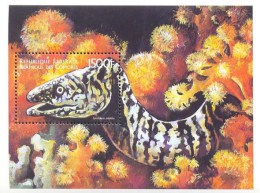 COMORES   877  MINT NEVER HINGED SOUVENIR SHEET OF FISH-MARINE LIFE - Fische