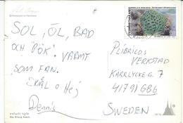 Thailand Via Sweden,POSTCARD WITH NEEDLE HOLE !!! Nice Stamp 1992 International Correspondence Week.Corals. - Thaïlande