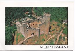 CP 12 NAJAC  Le Chateau - Najac