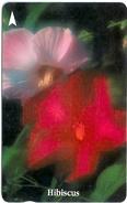 Singapore - Hibiscus, Flowers, 32SIGF, 1994, 250.000ex, Used