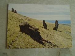 D148999  RAPA NUI  - CHILE   - Easter Island - Stone Statues - Moai -Isla De Pascua - Rapa Nui