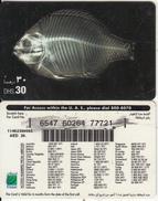 U.A.E. - Fish, Etisalat Prepaid Card Dhs 30(reverse 7), Used