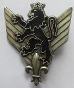 Insigne Métal 6°RHC , Régiment D´Hélicoptère De Combat - Delsart G 1904 - Forze Aeree