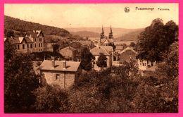 """Pussemange - Panorama - Église - NELS - Édition """" Hôtel Du Lion D'Or """" - Vresse-sur-Semois"""