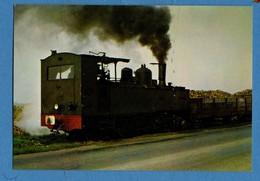 27 Chemin De Fer Regionaux De Seine Et Marne Pres De Nangis Locomotive 031 T No 37154 Remorquant Un Train De Betteraves - Nangis