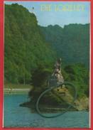 Loreleyfelsen Mit Loreley-Statue ,St. Goarshausen Am Rhein - Loreley