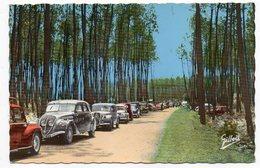 MONTENDRE LES PINS--1968--L'Allée Conduisant Au Lac Baron Despeyroux (belles Voitures Dont Citroen Traction) - Montendre