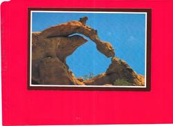 NEVADA - ETATS UNIS -  NATURAL WONDER - Valley Of Fire State Park  - MOD - - Etats-Unis