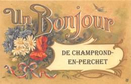 28 - EURE ET LOIR / Fantaisie Moderne - CPM - Format 9 X 14 Cm - CHAMPROND EN PERCHET - Frankrijk