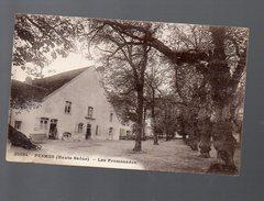 Pesmes (70 Haute Saône) Les Promenades  (voyagé 1927) (PPP4720) - Pesmes