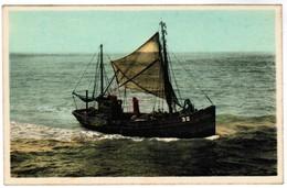 Den Haan, Le Coq Sur Mer, Terugkomst Van De Visvangst (pk32976) - De Haan