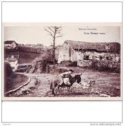 GPCATP6908CPA-LFTMD10655TNESPA.Tarjeta Postal DE GUIPUZCOA.Casas Rurale,caminos.NIÑO CON BURRO En  IRUN. - Escenas & Paisajes