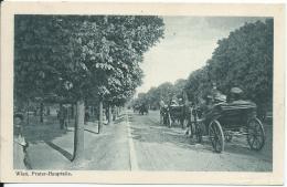 AK 0665  Wien - Prater-Hauptallee ( Fiaker ) / Verlag Kilophot Um 1918 - Prater