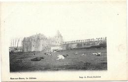 Ham-sur-Heure NA5: Le Château - Ham-sur-Heure-Nalinnes