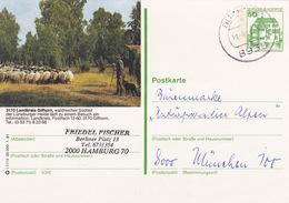"""BPK Bund P 134 I """"Landkreis Gifhorn"""" Gelaufen Ab """"BUCHLOE"""" (ak0406) - Stamps"""