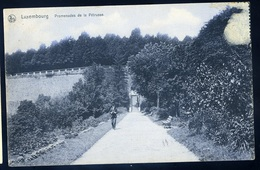 Cpa Du Luxembourg -- Promenades De La Pétrusse      GX65 - Luxembourg - Ville