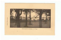 1716 Dep 29   Port Manech Le Village  La Vente Sera Retirée Le 29-04 - Névez