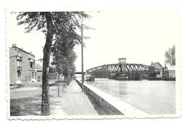 Willebroekspoorbrug Pont Rails L Thomas  P1211 - Willebroek