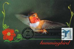 D29880 CARTE MAXIMUM CARD 2014 USA - HUMMINGBIRD CP ORIGINAL