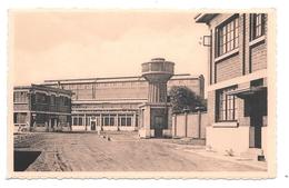 Willebroek Ammoniak Fabriek L Thomas P1215 - Willebroek