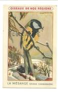 Oiseaux De Nos Régions. La Mésange Grande Charbonnière. Signée Fontinelle. Crème Eclipse Cirage - Animaux