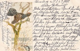 Chasse, Hunting  Tétras  Auerhahn  Korhoen  Grouse  Oiseau  Geflügel Signe  Illustrateur Old  Cpa 1900 - Caccia