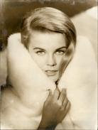 PHOTO - Photo De Presse - ANN MARGRET - Actrice - - Célébrités