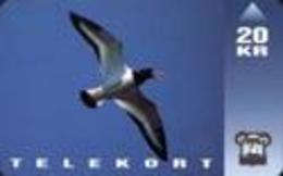 TK14581 FAROER ISLANDS - Bird 20 KR