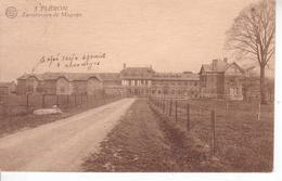 Fléron - Sanatorium De Magnée - Edition Albert - Fléron