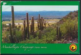 °°° 3769 - BOLIVIA - TUPIZA - MAUKALLAJTA CHUQUIAGO - 2006 With Stamps °°° - Bolivia