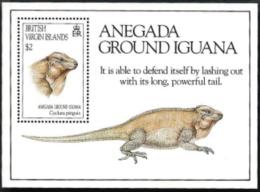 Br.Virgin Isl,  Scott 2017 # 795,  Issued 1994,  S/S Of 1,  MNH,  Cat $ 6.25,  Iguana - British Virgin Islands