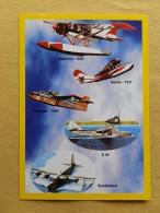Cpm Etablissement MINARRO , AVIONS X 5 , Bellanca 1930 , Goose 1937 , Canadair 1965 , E 59 , Sunderland (40) - Aerei